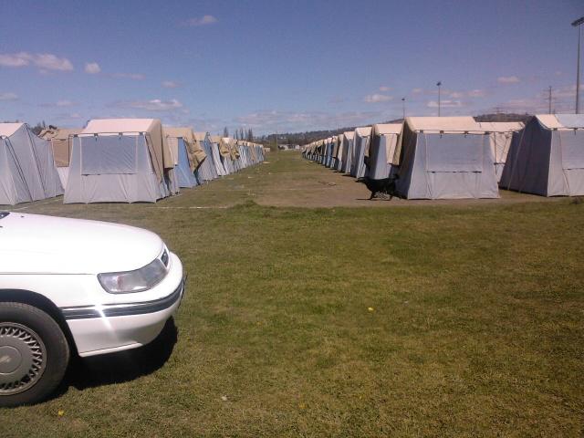 Tents_Bertie