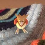 spearow_crochet